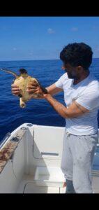 Gite in barca Lampedusa Perla del Mare - Un mare da amare